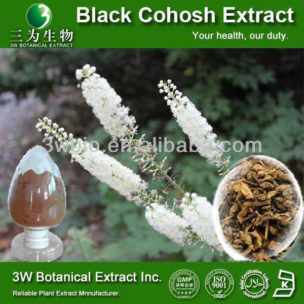 Medical Grade Natural Black Cohosh P.E./Black Cohosh Powder/Black Cohosh Root Extract Powder