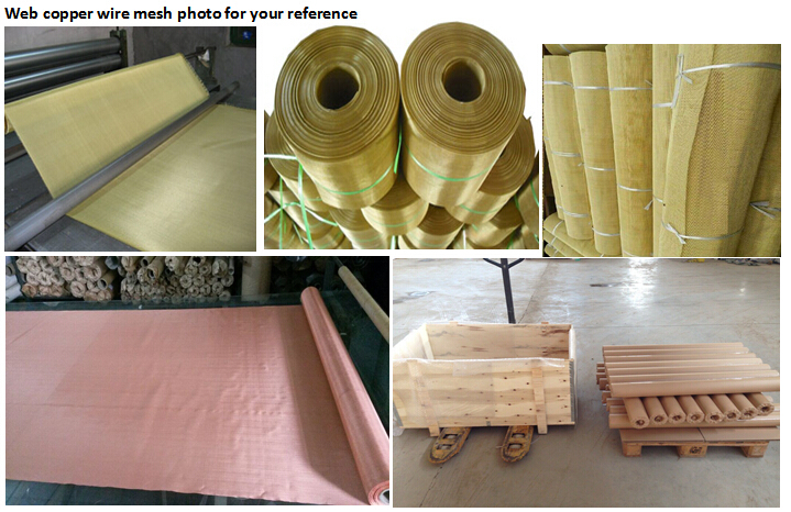 brass /phosphor bronze/red copper wire mesh
