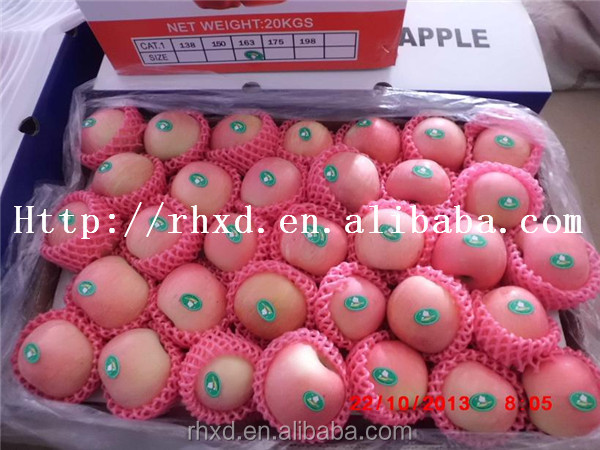 2016 fresh fruit import red fuji apple from china/cheap apple fruit