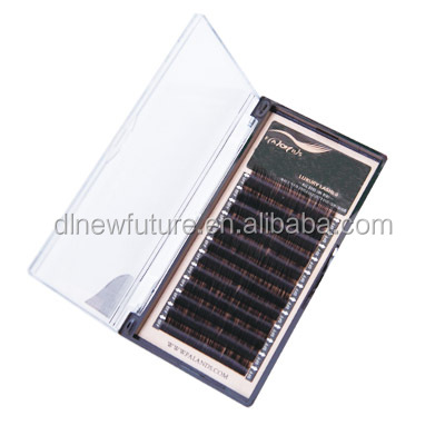 fashionable Rolling up 6D eyelash extension