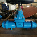 Socket Gate Valve,NRS