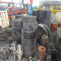 OEM high Precision Helical Gear