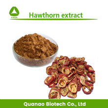 Pure natural hawthorn berry /leaf extract Flavone powder free sample