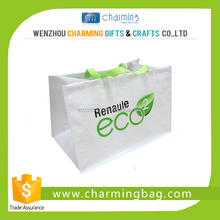 White Eco-friendly Bag for Shopping
