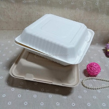 Sugarcane and Bamboo Biodegradable Food Container Premium Takeout Bento Box