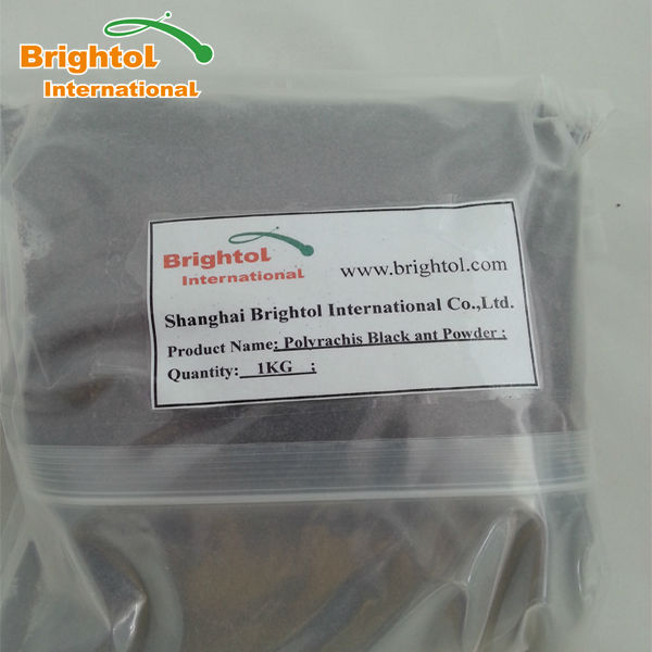 Polyrachis Black ant Powder with low price