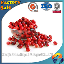 fresh cranberry fruits for sale