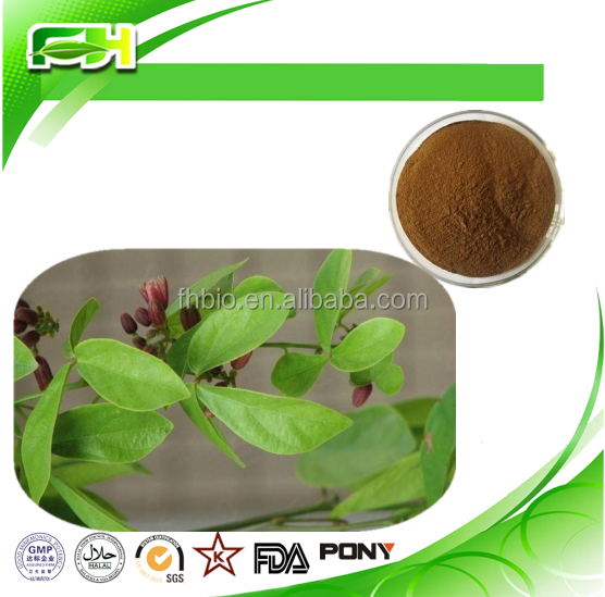 Natural Sinomenium Acutum Extract - 98% Sinomenine/Caulis Sinomenii extract