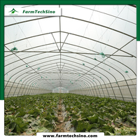 Farmtechsino Plastic Film Greenhouse For Sale