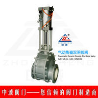 Electric Ceramic double plate Gate Valve