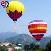 Hot Sales Entertainment Inflatable Air Balloons