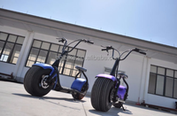 2017 1000W high speed lithium battery mobility citycoco electric scooter with bluetooth speaker