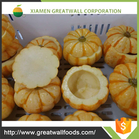 Iqf Fresh Mini Pumpkin Whole With Best Price