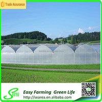 Fruit vegetable greenhouse clip for sale