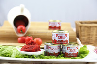 chinese food and chinese tomato paste wholesale