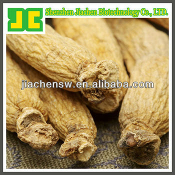 natural Panax Ginseng powder 5% ginsenosides