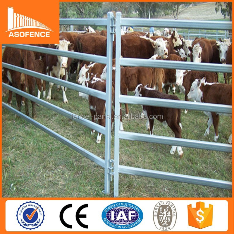 China anping A.S.O. hot sale cheap price cattle yard panel antirust surface