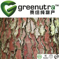 High quality pure pine bark extract powder