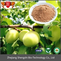 100% natural pure Organic natural plum fruit extract,green plum extract powder