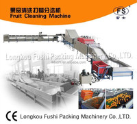 automatic fruit citrus washing waxing and weight selection machine
