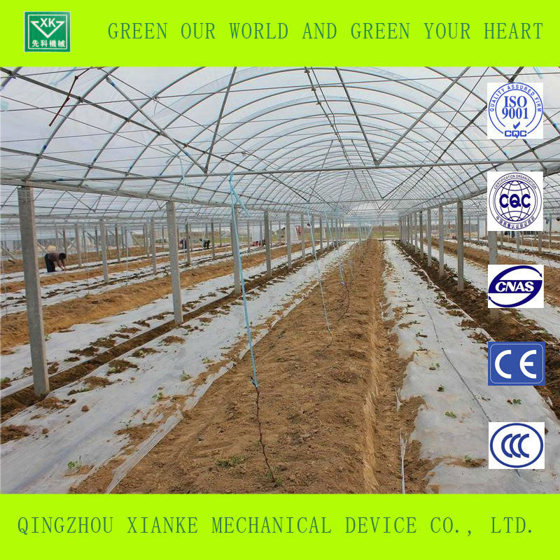 mini tunnel film greenhouses for sale for agricultural
