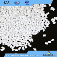 Cheap price custom professional pa pp ps pet pellets white masterbatch
