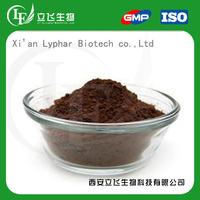 Manufacturer Supply High Standard Black Cocoa Powder