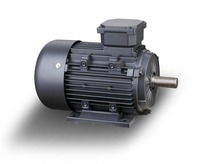 YE3 premium efficiency 2940RPM three phase 15kw ac induction motor