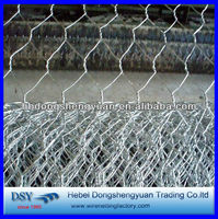 high quality double twist hot dipped galvanized chicken wire mesh(28 years history)
