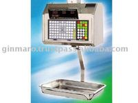 Mettler Toledo 8442 Dot Matrix and Hanging Scale printer