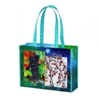 Non woven with pp film laminated pocket foldable bag