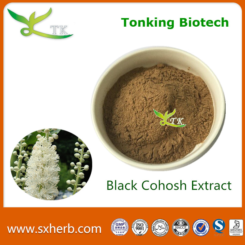 100% Natural Extract Powder Black Cohosh