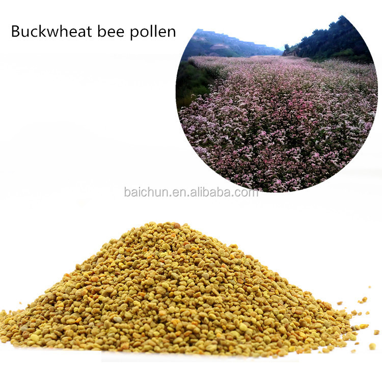 Top-quality of rich in vitamin E of buckwheat bee pollen from bulk bee polen