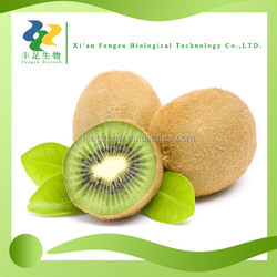 wholesale price fresh kiwi fruit,kiwi fruit extract,kiwi fruit extract powder 5% Flavone