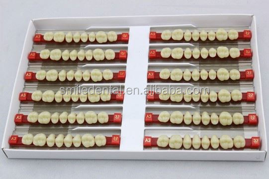 Posterior upper and lower denture making supplies