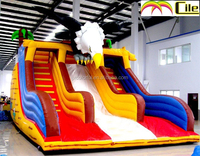 CILE Large Outdoor Inflatable Eagle Water Slide for Water Park