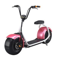 High Quality Cheap Price-Hydraulic disc brakes Self Balancing Electric Scooter/ Adult off Road Electric Autobike
