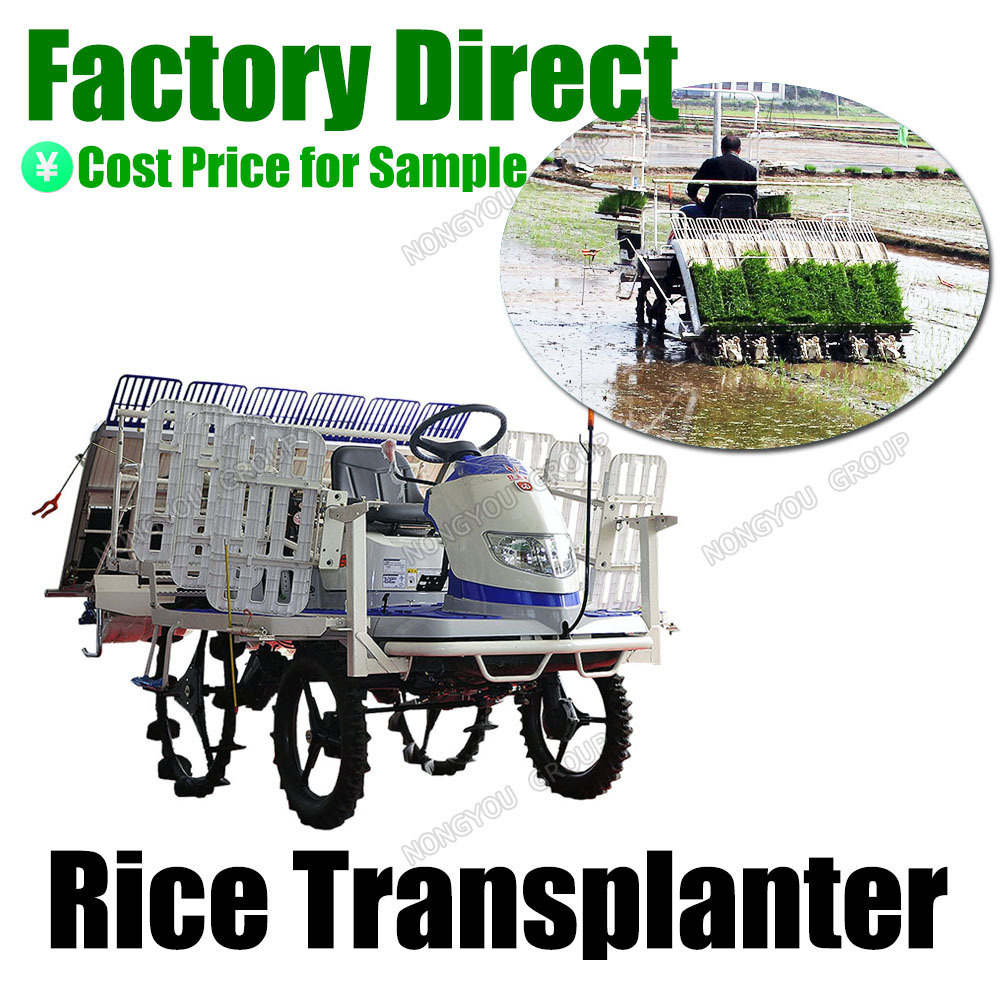 Nursery Plants Customizable Riding Type Agriculture Paddy Planting Rice Planter Machine 2Z-6B2