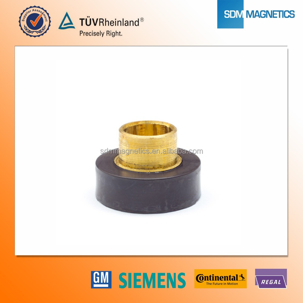 High Speed Application Injection Molded Ferrite Magnet