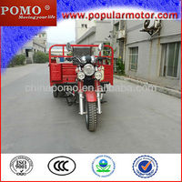 2013 Model Hot Popular Cargo Motorized Electric Delivery Trike