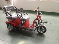 NEW electric tricycle with 2 seats for leisure