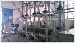 High Quality 10t/d machine for making corn flour and price white corn flour