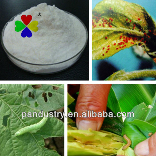 Biological Pesticide Chlorpyrifos 97%TC 480G/LEC Insecticide Chlorpyrifos