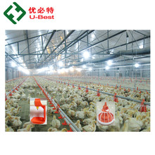 Broiler Poultry Automatic Feeding System Agricultural Farm Tools and Equipment and Their Uses For Industrial Chicken House