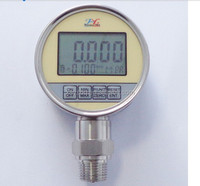 Digital Pressure Gauge wika style in Germany