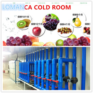 cold room for fruit and vegetables Project In Uzbekistan