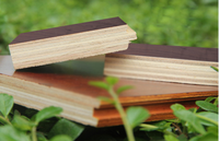 different color stain Engineered & Solid American Black Walnut Wood Flooring manufacturer