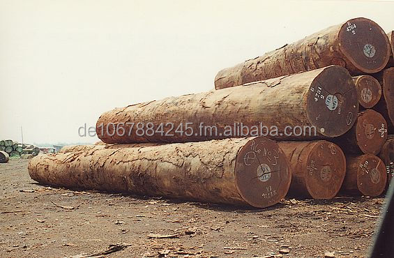 Africa Ebony Logs and sawn Timber (Ebene, cape-dawson, grenadille, African blackwood, grenadillo )