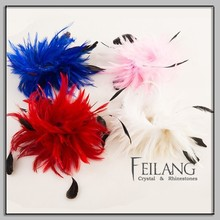 Coque Tails Feather Material For Sale