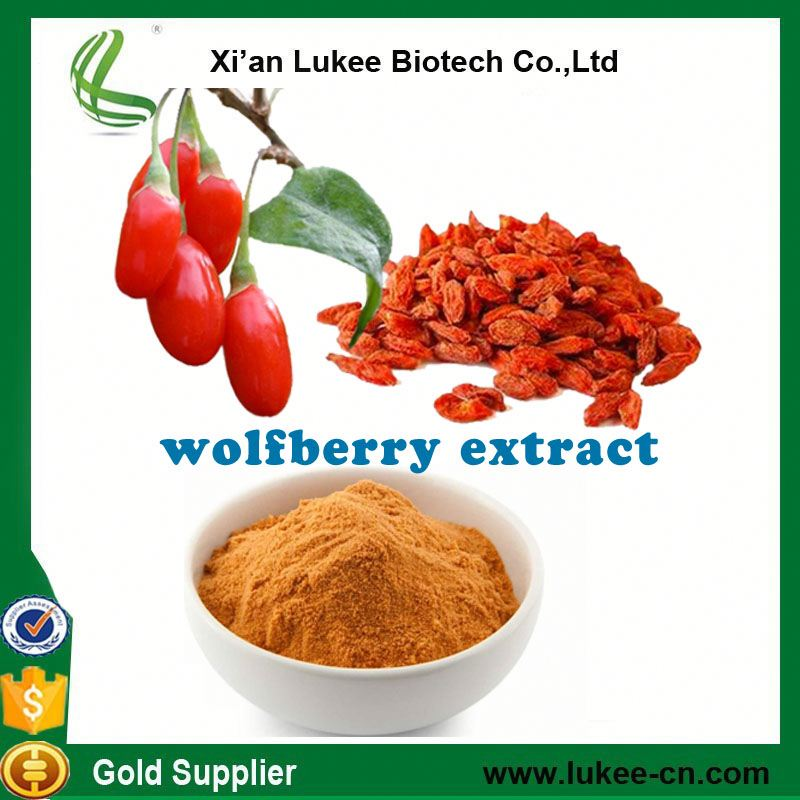 ec / usda organic certification goji powder / wolfberry extract / goji berry extract